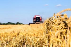 О грантах в сельскохозяйственном секторе расскажут бизнесу Вологодчины